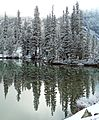 Yosemite Reflections, Tioga Lake 5-15 (25129604224).jpg