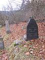Židov hřbitov Rabštejn 16.jpg