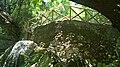 Γεφύρι στην κοιλάδα των πεταλούδων στη Ρόδο.jpg