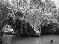 Акведук на Чёрной речке.JPG