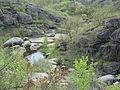 Арбузинські скелі.JPG