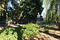Боложинів Памятник Франку 9285.jpg