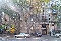 Будинок прибутковий Яворовської.jpg