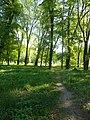 Графський парк (парк Ніжинського педінституту), Ніжинський район, м. Ніжин 74-104-5004 07.JPG