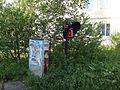 Заросла народная тропа - panoramio.jpg