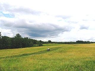 Batetsky District District in Novgorod Oblast, Russia