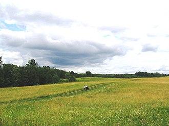 Batetsky District - Scene in Batetsky District