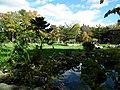 Осенняя пора - panoramio.jpg