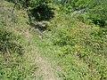 Планина Озрен (15).jpg