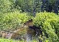Река Вочка в Орловском районе Кировской области.jpg