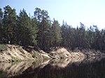 Рязанская область, река Пра, вид на левый берег за д. Ешкур.JPG
