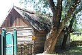 Садиба заможного селянина-землевласника клуня IMG 1811.jpg