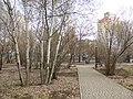 Сквер Роща Сердца, Воронеж.jpg