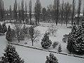 Ужгород , вул. Паризької Комуни 3 - panoramio.jpg
