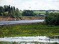 Чайки над Сысолой - panoramio.jpg