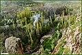 مناظری از اطراف روستای چاوان سفلی - panoramio.jpg