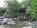 七桥瓮湿地公园 - panoramio (1).jpg