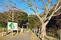 佐倉城址にて Sakura Castle 2015.1.02 - panoramio (1).jpg