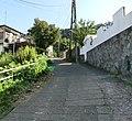 崖に向かう道 - panoramio (2).jpg