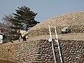 武蔵府中熊野神社古墳 2009.03.21 - panoramio (5).jpg