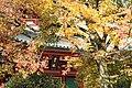 知恩院 Chion-in (11152866994).jpg