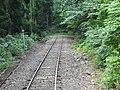 線路が森の中に溶けていきます - panoramio.jpg