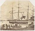 -A Cargo of Seventy Elephants Landing from Burmah during the 1857 Mutiny- MET DP146114.jpg