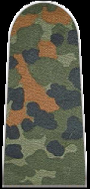 Private (rank) - Image: 001 Soldat