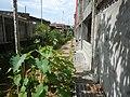 00266jfCatholic Women's League Santo Cristo Pulilan Quasi Parish Chuchfvf 23.jpg