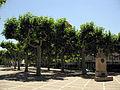 012 Plaça del Carme, amb el monument a Ramon Carnicer.jpg