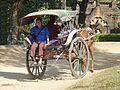 017 Horse and carraige, Bagan (8995320242).jpg