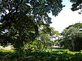 07159jfQuirino Highway Hall Lands San Josefvf 21.JPG