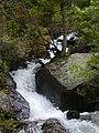 1000 Falls - panoramio.jpg