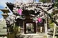160402 Chogosonshiji Heguri Nara pref Japan01s3.jpg