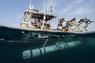 REMUS (AUV) - US Navy sailors launch a REMUS 600 (designated Mk 18 Mod 2 in Navy service) in the Persian Gulf