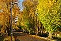 171103 Iwate University Morioka Iwate pref Japan18s3.jpg