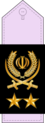 19- IRIADF-MG.png