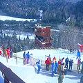 1980 Winter Olympics.jpg