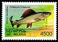 1997. Stamp of Belarus 0226.jpg