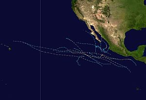 1998 Pacific hurricane season summary.jpg