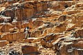 19 Nabatean Temple Trail - You Will Have To Negotiate Rock Formations - panoramio.jpg