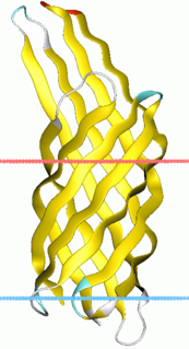 Virulence-related outer membrane protein family InterPro Family