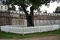 2005-09-08 20-42-20 Old tree, ruins. Развалины - panoramio.jpg