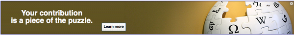 2010 Fundraiser Contrib banner.png