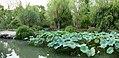 2015-09-24-141330 - Suzhou, Garten des bescheidenen Beamten.jpg
