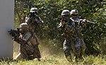 2015.9.19.해병대2사단-한미 해병 합동훈련 - 16th Sep. 2015. ROK 2nd Marine Division - ROKMC & USMC joint trainning (22019339555).jpg
