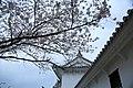 20160403 Himeji-Castle 3455 (26220669114).jpg