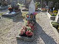 2017-10-18 (317) Friedhof Plankenstein.jpg