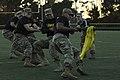 2017 Army vs. Navy Football Game (38866178432).jpg