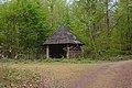 20200413State forest Saarbrücken1.jpg